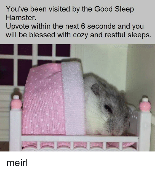 restful: You've been visited by the Good Sleep  Hamster.  Upvote within the next 6 seconds and you  will be blessed with cozy and restful sleeps. meirl