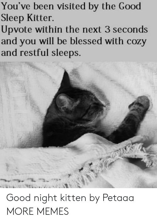 restful: You've been visited by the Good  Sleep Kitter.  Upvote within the next 3 seconds  and you will be blessed with cozy  and restful sleeps. Good night kitten by Petaaa MORE MEMES