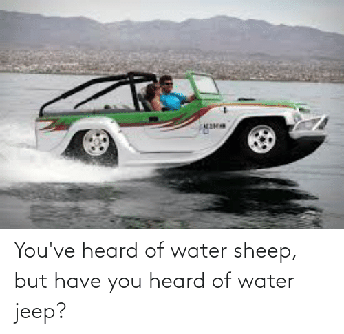 Jeep: You've heard of water sheep, but have you heard of water jeep?