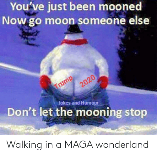 Jokes, Moon, and Trump: You've just been mooned  Now go moon someone else  Trump  2020  Don't let the mooning stop  Jokes and Humour Walking in a MAGA wonderland