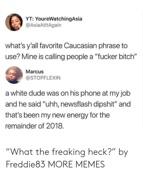 """Bitch, Dank, and Dude: YT: YoureWatchingAsia  @AsiaAtltAgain  what's y'all favorite Caucasian phrase to  use? Mine is calling people a """"fucker bitch""""  Marcu  @STOPFLEXIN  a white dude was on his phone at my job  and he said """"uhh, newsflash dipshit"""" and  that's been my new energy for the  remainder of 2018. """"What the freaking heck?"""" by Freddie83 MORE MEMES"""