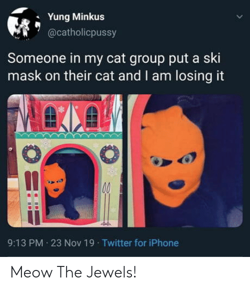 Iphone, Twitter, and Mask: Yung Minkus  @catholicpussy  Someone in my cat group put a ski  mask on their cat and I am losing it  00  9:13 PM 23 Nov 19 Twitter for iPhone Meow The Jewels!