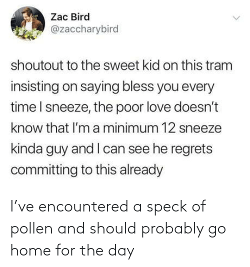 pollen: Zac Bird  @zaccharybird  shoutout to the sweet kid on this tram  insisting on saying bless you every  time I sneeze, the poor love doesn't  know that l'm a minimum 12 sneeze  kinda guy and I can see he regrets  committing to this already I've encountered a speck of pollen and should probably go home for the day