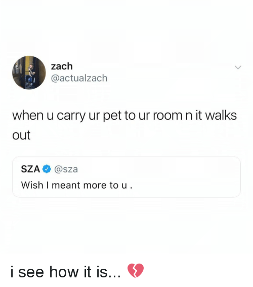 Relatable, How, and Pet: zach  @actualzach  when u carry ur pet to ur room n it walks  out  SZA @sza  Wish I meant more to u i see how it is... 💔