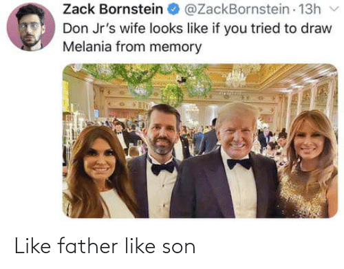 Like If You: Zack Bornstein  @ZackBornstein 13h  Don Jr's wife looks like if you tried to draw  Melania from memory Like father like son