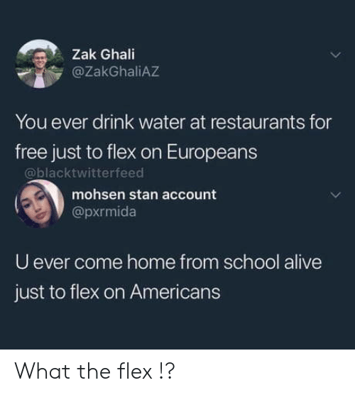 For Free: Zak Ghali  @ZakGhaliAZ  You ever drink water at restaurants for  free just to flex on Europeans  @blacktwitterfeed  mohsen stan account  @pxrmida  U ever come home from school alive  just to flex on Americans What the flex !?