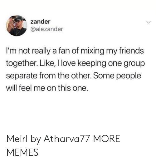 separate: zander  @alezander  I'm not really a fan of mixing my friends  together. Like, I love keeping one group  separate from the other. Some people  will feel me on this one. Meirl by Atharva77 MORE MEMES
