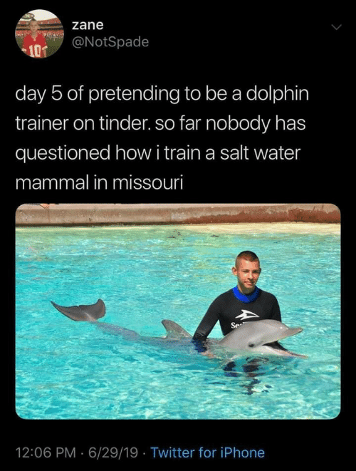 Iphone, Tinder, and Twitter: zane  @NotSpade  101  day 5 of pretending to be a dolphin  trainer on tinder. so far nobody has  questioned howi train a salt water  mammal in missouri  Se  12:06 PM 6/29/19 Twitter for iPhone