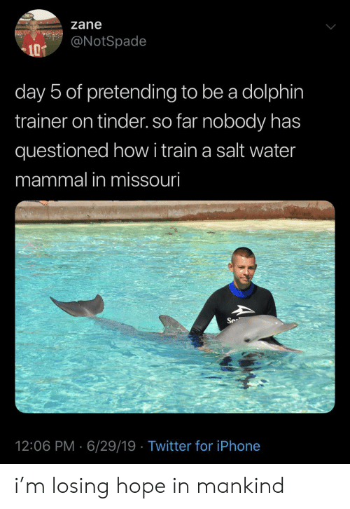 Iphone, Tinder, and Twitter: zane  @NotSpade  10T  day 5 of pretending to be a dolphin  trainer on tinder. so far nobody has  questioned howi train a salt water  mammal in missouri  Se  12:06 PM 6/29/19 Twitter for iPhone i'm losing hope in mankind