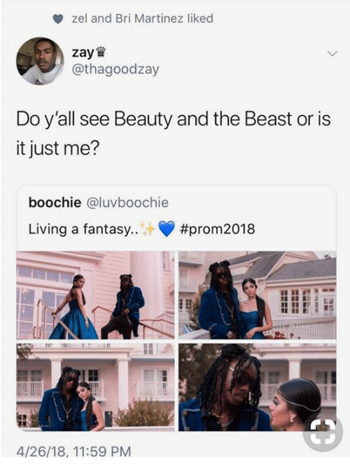 Dank, Beauty and the Beast, and Living: zel and Bri Martinez liked  zay  /@thagoodzay  Do y'all see Beauty and the Beast or is  it just me?  boochie @luvboochie  Living a fantasy..  #prom2018  4/26/18, 11:59 PM
