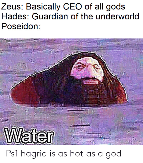 Guardian: Zeus: Basically CEO of all gods  Hades: Guardian of the underworld  Poseidon:  m-Seq  Water Ps1 hagrid is as hot as a god
