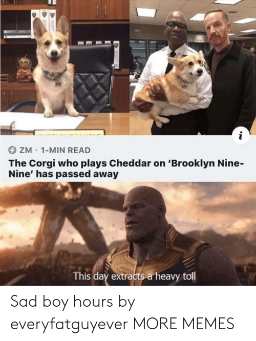 Nine Nine: ZM 1-MIN READ  The Corgi who plays Cheddar on 'Brooklyn Nine-  Nine' has passed away  This day extracts a heavy toll Sad boy hours by everyfatguyever MORE MEMES