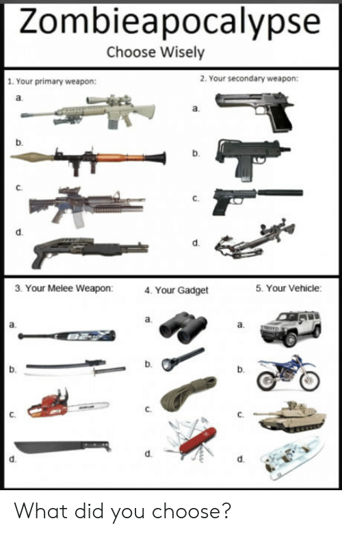 B. B., Melee, and Weapon: Zombieapocalypse  Choose Wisely  1. Your primary weapon:  2. Your secondary weapon:  b.  1b  d.  3. Your Melee Weapon:  4. Your Gadget  5. Your Vehicle:  a.  b.  b.  d. What did you choose?