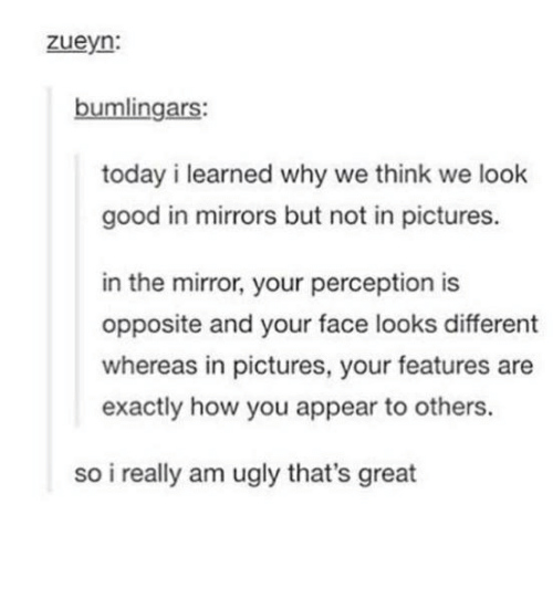 mirrored: zueyn:  bumlingars:  today i learned why we think we look  good in mirrors but not in pictures.  in the mirror, your perception is  opposite and your face looks different  whereas in pictures, your features are  exactly how you appear to others.  so i really am ugly that's great